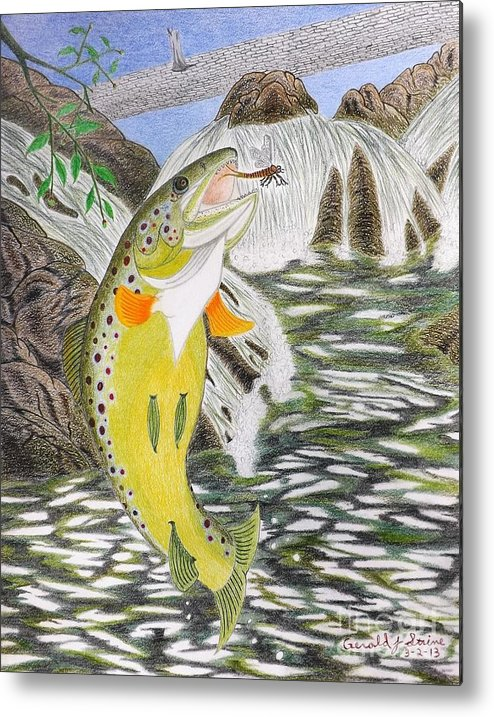 Trout Stream Metal Print featuring the drawing Trout Stream In May by Gerald Strine