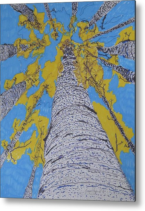 Abstract Birch Metal Print featuring the mixed media Up At Birch by James SheppardIII
