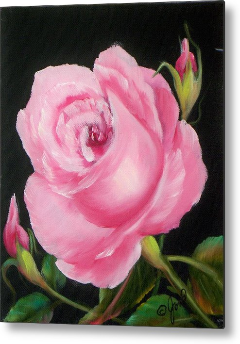 Floral Metal Print featuring the painting A Pink Rose by Joni McPherson