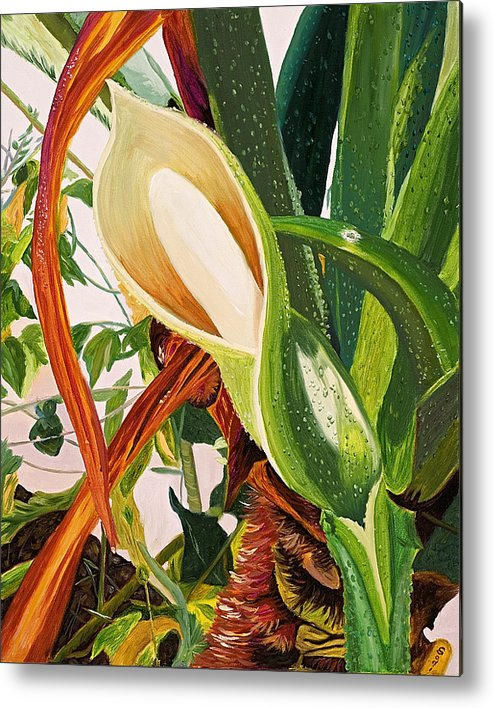 Floral Metal Print featuring the painting Blooming Philodendron Tree After Rain by Sodi Griffin