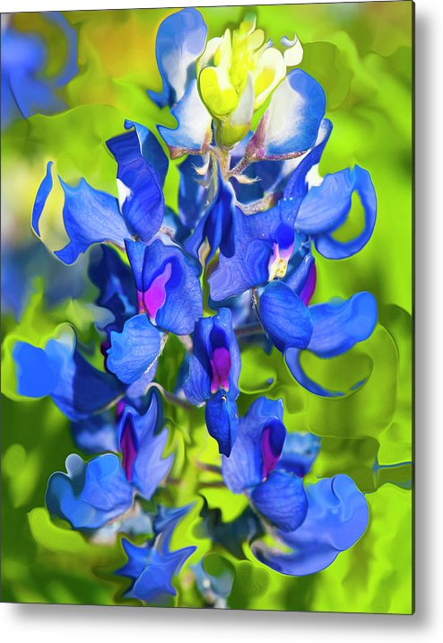 Flower Metal Print featuring the photograph Bluebonnet Fantasy by Stephen Anderson