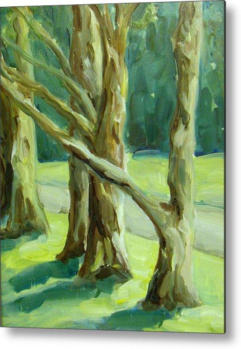 Trees Metal Print featuring the painting Cedars In Woodward Park by Linda Vespasian