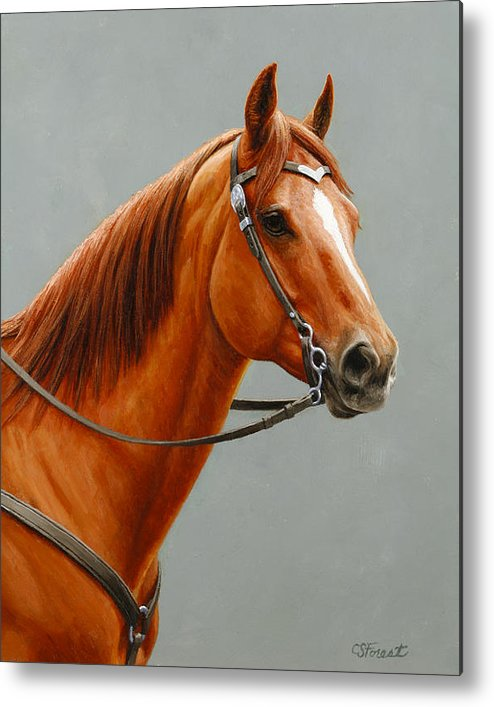 Horse Metal Print featuring the painting Chestnut Dun Horse Painting by Crista Forest