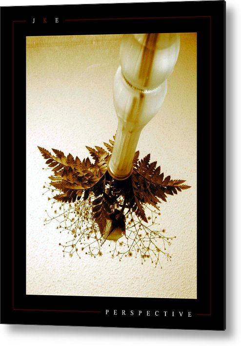 Flower Metal Print featuring the photograph Perspective by Jonathan Ellis Keys