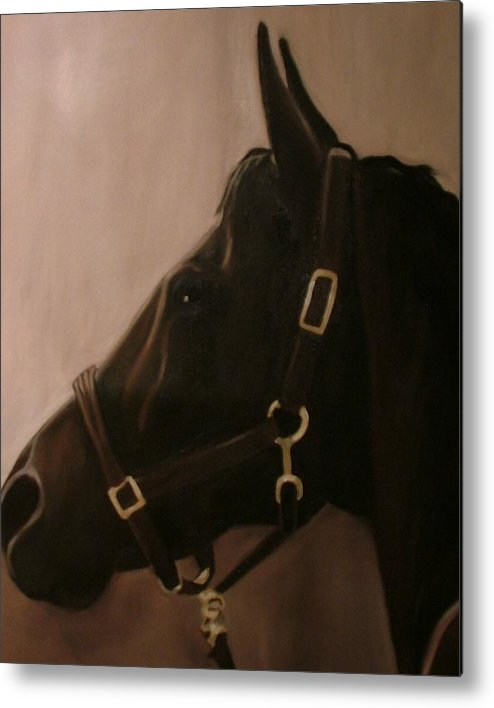 Horse Metal Print featuring the painting Pocketchange by Donna Thomas