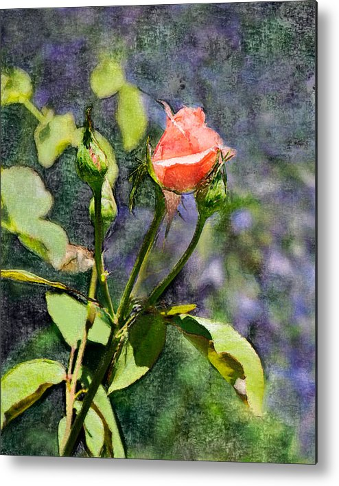 Rose Metal Print featuring the digital art Rose Elegance Art by Sherry Curry