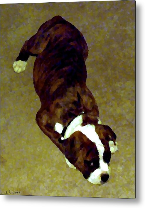 Dog Metal Print featuring the photograph Sleepy Puppy by Elise Samuelson
