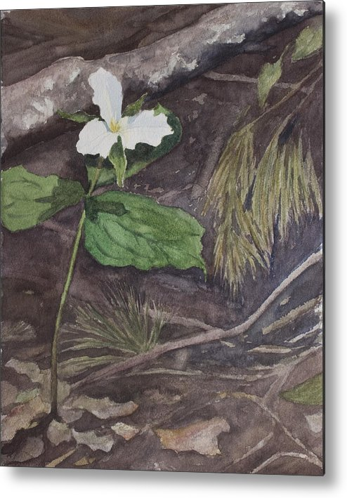 White Trillium Metal Print featuring the painting White Trillium by Debbie Homewood