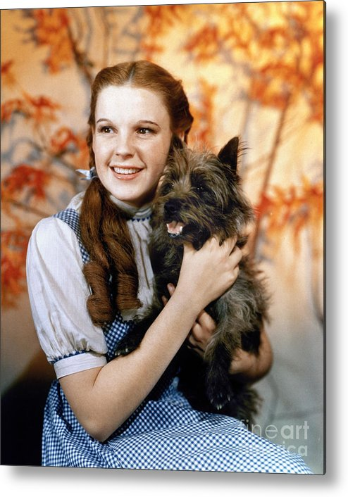 1939 Metal Print featuring the photograph Wizard Of Oz, 1939 by Granger