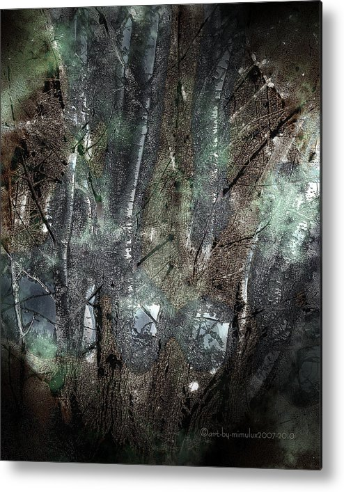 Zauberwald Metal Print featuring the photograph Zauberwald Vollmondnacht Magic Forest Night Of The Full Moon by Mimulux patricia no No