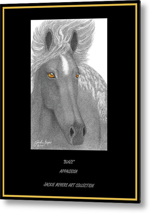 Appoloosa Metal Print featuring the drawing Blaze by Jackie Meyers