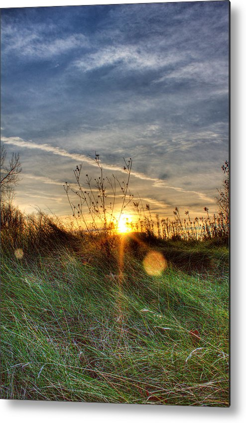 Sunrise Metal Print featuring the photograph Sunrise Through Grass by Tim Buisman