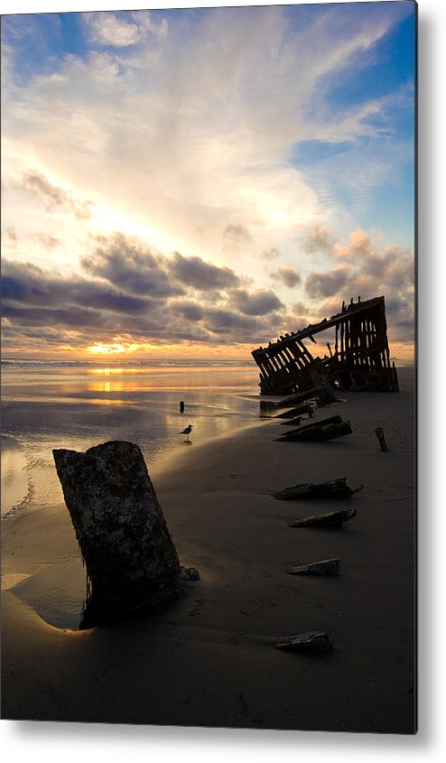 Landscape Metal Print featuring the photograph Beach Bones by Jennifer Owen