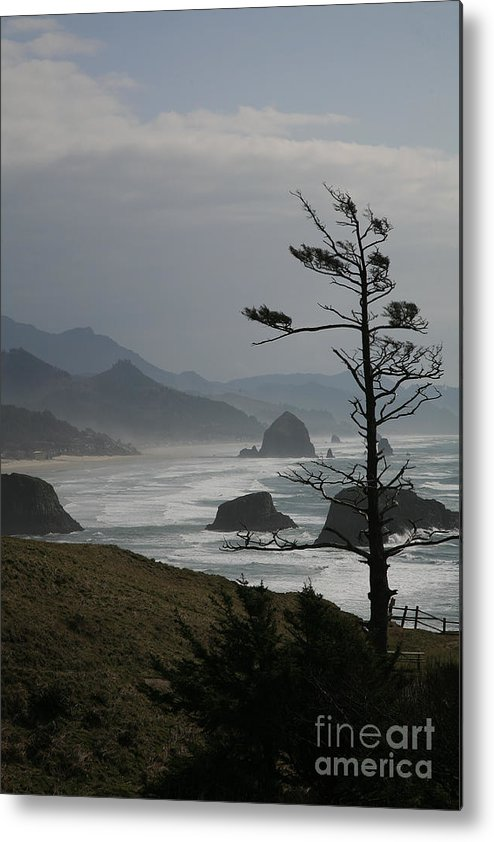 Cannon Beach Metal Print featuring the photograph Cannon Beach by Timothy Johnson