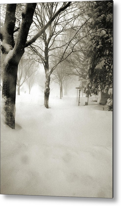 Sepia Metal Print featuring the photograph Chicago Blizzard 2011 by Joanne Coyle