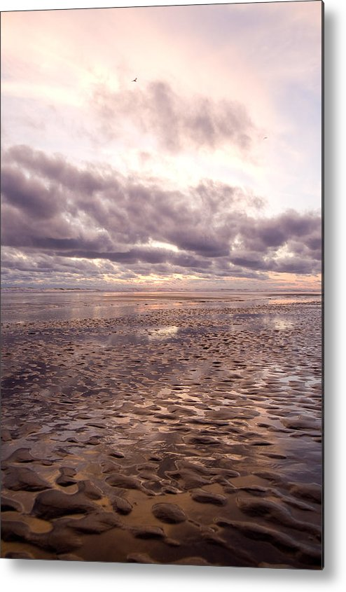 Beach Metal Print featuring the photograph Collective Sigh by Jennifer Owen