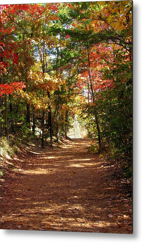 Fall Metal Print featuring the photograph Country Path by Ralph Perdomo