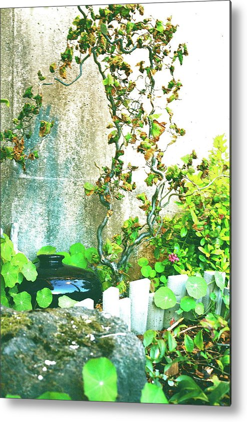 Gardens Metal Print featuring the photograph Garden Scene by Claire McGee