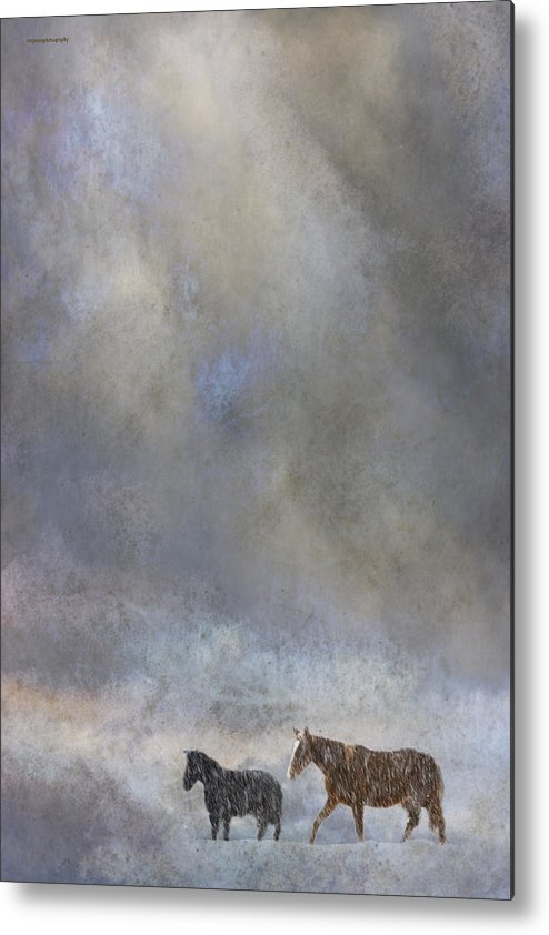 Winter Metal Print featuring the photograph Going To Barn by Ron Jones