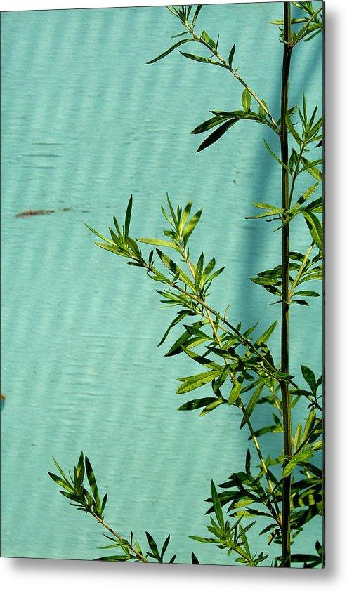 Green Metal Print featuring the photograph Green On Aqua 1 by Art Ferrier