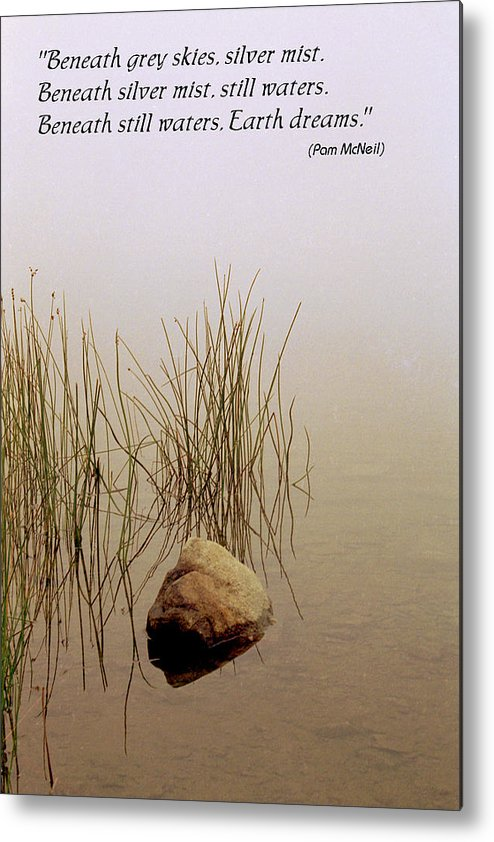 Fog Metal Print featuring the photograph Haiku Poster by Roger Soule