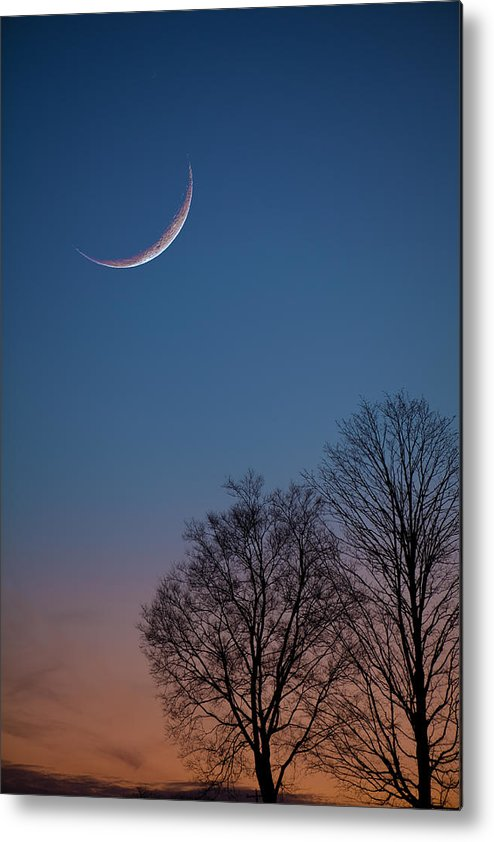 Moon Metal Print featuring the photograph Lunacy by Charles Warren