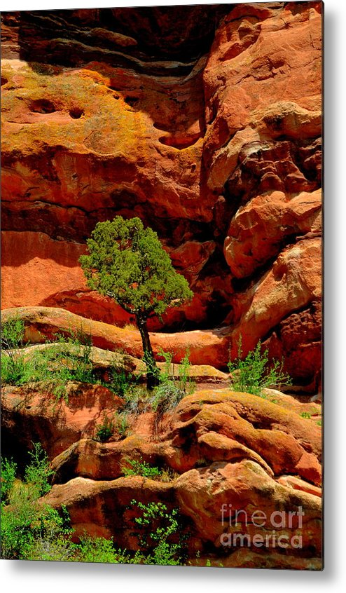 Red Rocks Metal Print featuring the photograph Red Rocks Colorado by Patrick Short