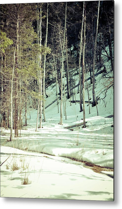 Snow Metal Print featuring the photograph Snow Day by Brenton Woodruff