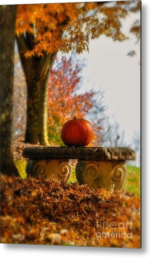 Pumpkin Metal Print featuring the photograph The Last Pumpkin by Lois Bryan