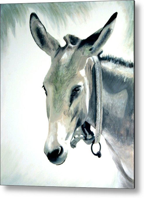 Donkey Metal Print featuring the painting Donkey by Fiona Jack