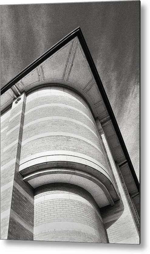Black And White Metal Print featuring the photograph An Ant's Eye View by Elizabeth Hounslea