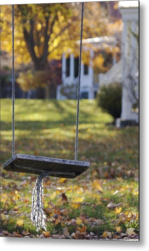 Swing Metal Print featuring the photograph Carefree by Faith Harron Boudreau