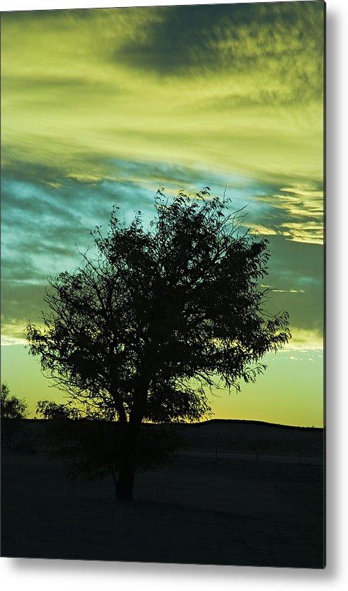 Sunset Metal Print featuring the photograph Green Sunset by Terry Wieckert