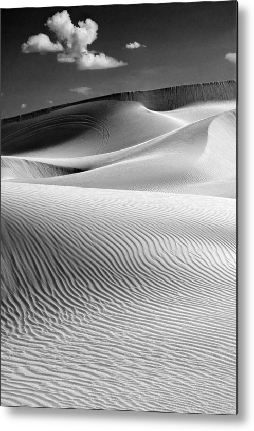 Sand Dunes Metal Print featuring the photograph Imperial Dunes 530 by Hans Mauli