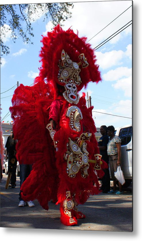 New Orleans Metal Print featuring the photograph Indian Red by David Fields