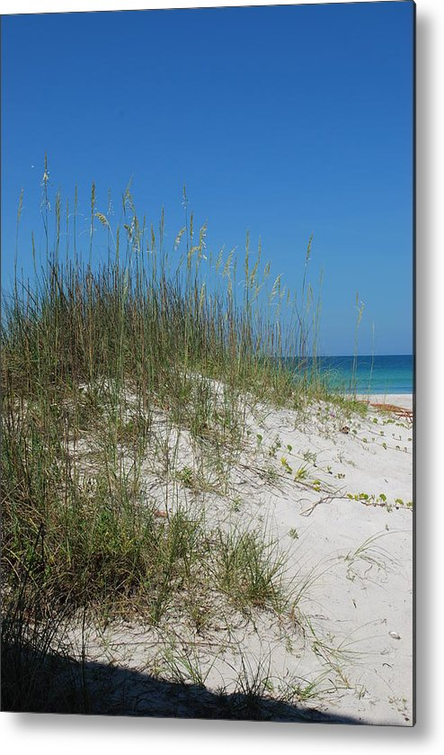 Beach Metal Print featuring the photograph Island Sea Oats by Lisa Gabrius