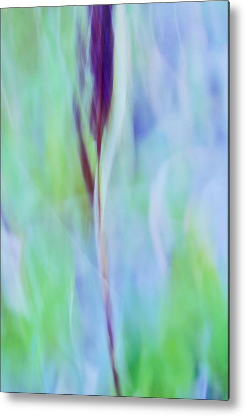 Blue Metal Print featuring the photograph L Epi by Variance Collections
