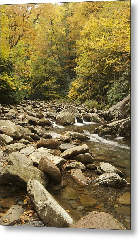 Autumn Metal Print featuring the photograph Tennessee Autumn Stream 6059 by Michael Peychich