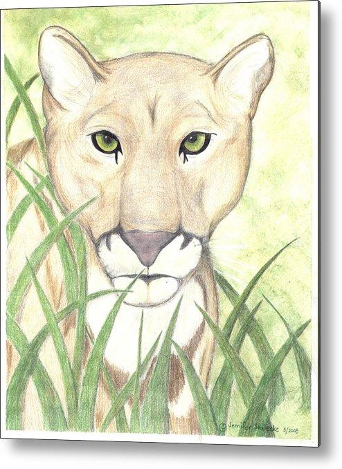 Mountain Lion Metal Print featuring the drawing Stalker by Jennifer Skalecke
