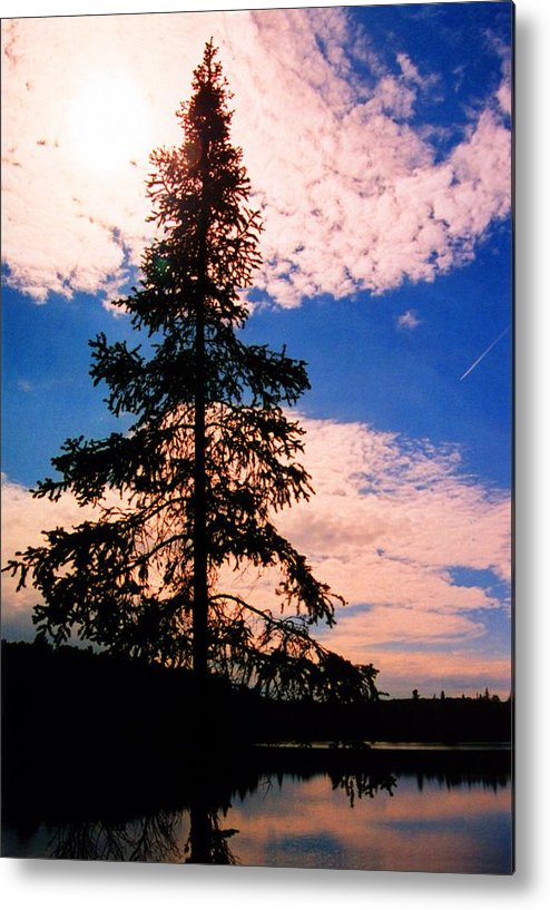 Landscape Metal Print featuring the photograph Pine Tree By Peck Lake 4 by Lyle Crump