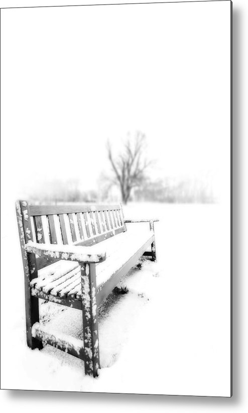 Winter Metal Print featuring the photograph Winter Time by Svetlana Sewell