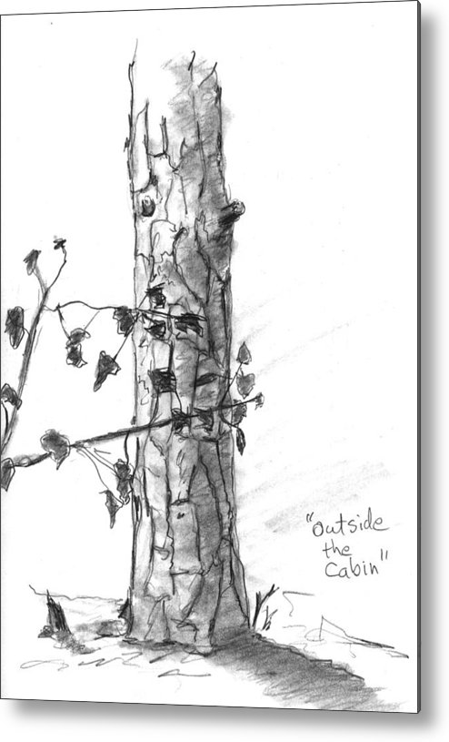 Tree Metal Print featuring the drawing Outside The Cabin by Kevin Callahan
