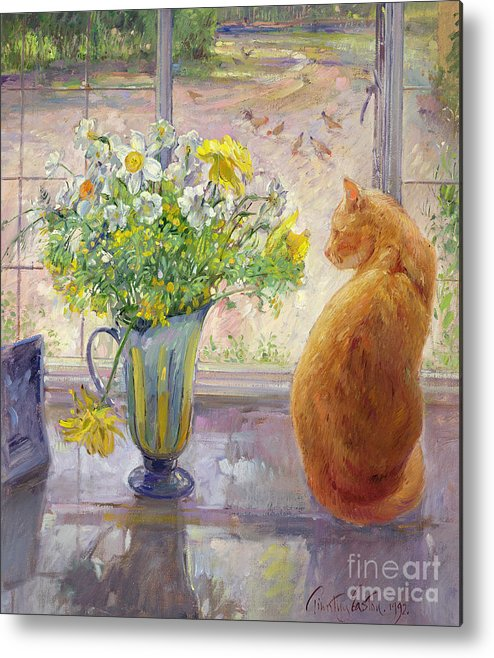 Ginger; Cat; Vase; Narcissi; Chicken; Pheasants Eye; Flower; Flowers ; Window; Open Window; Pheasant Metal Print featuring the painting Striped Jug With Spring Flowers by Timothy Easton