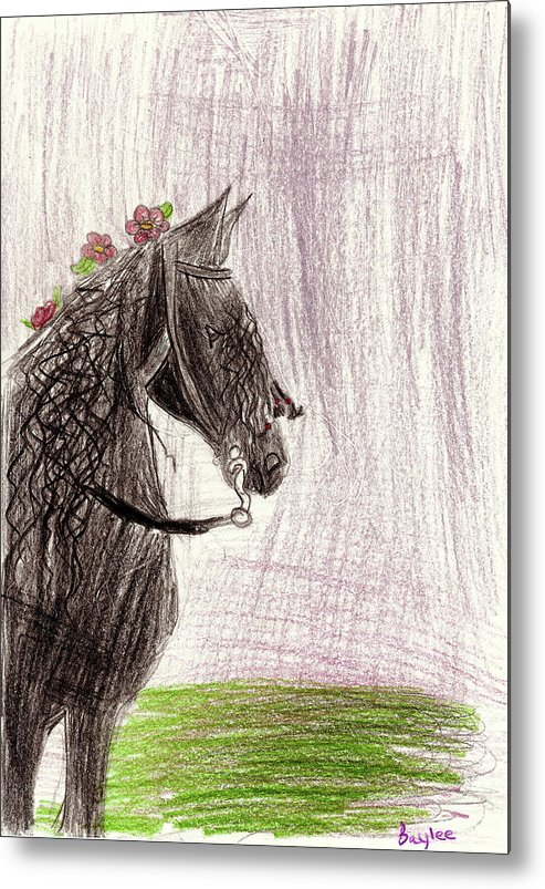 Metal Print featuring the drawing Baylee B by Baylee B