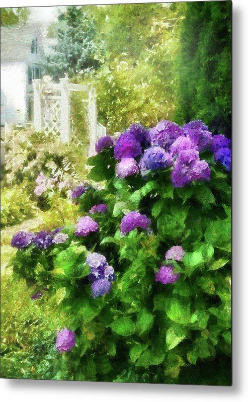 Suburbanscenes Metal Print featuring the photograph Flower - Hydrangea - Lovely Hydrangea by Mike Savad