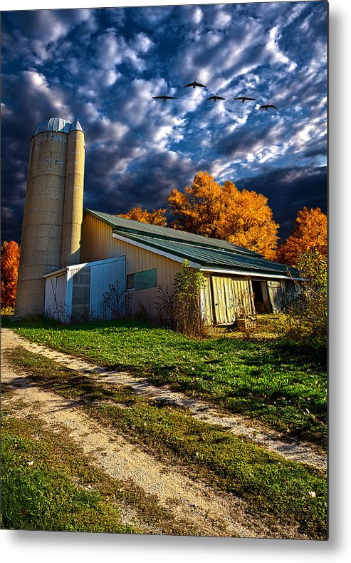 Horizons Metal Print featuring the photograph Wisconsin Life by Phil Koch