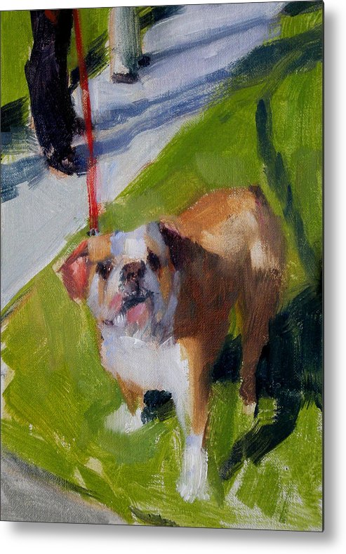 Bulldogs Metal Print featuring the painting Buddy On A Red Leash by Merle Keller
