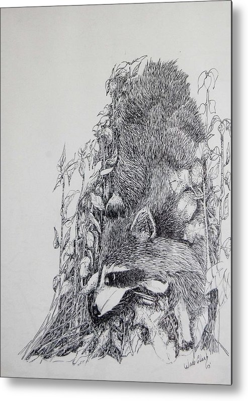 Animals Metal Print featuring the drawing Out Of The Woods by Wade Clark