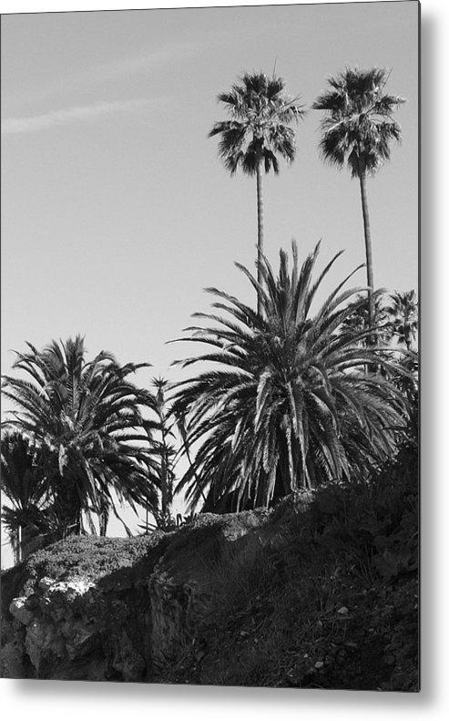 Palms Metal Print featuring the photograph Palms2 by Shari Chavira