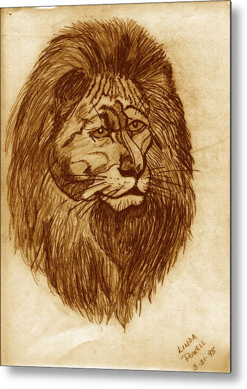 Drawing Metal Print featuring the digital art Lion by Linda Powell